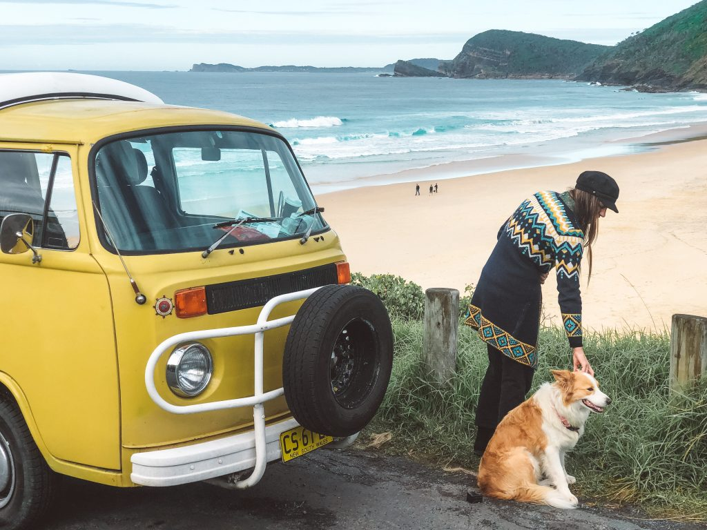 dog-friendly road trip boomerang beach